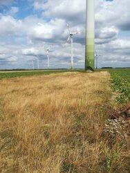 Gekauft: ENOVA Value hat einen 25-Megawatt-Windpark in Heinsberg akquiriert.<br /> © ENOVA