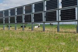 Landwirtschaft und solare Stromproduktion vereinen? Das innovative Next2Sun Gestellsystem machts möglich.<br /> © Ökostrom Saar GmbH