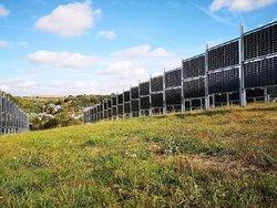 Anlagenkonzept der Next2Sun: Die vertikale Aufständerung der bifacialen Solarmodule ermöglicht, dass 90% der Solarparkflächen weiterhin landwirtschaftlich genutzt werden können.<br /> © Next2Sun GmbH