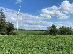Weiteres BNK © Parasol Projekt im Norden Schleswig-Holsteins<br /> © Parasol GmbH & Co.KG