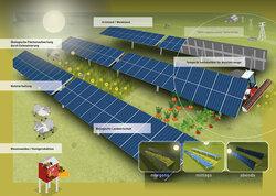 """""""Funktionsweise einer Agrar-Photovoltaikanlage mit einachsigen Trackern"""".<br /> © Solverde Projektentwicklung GmbH"""