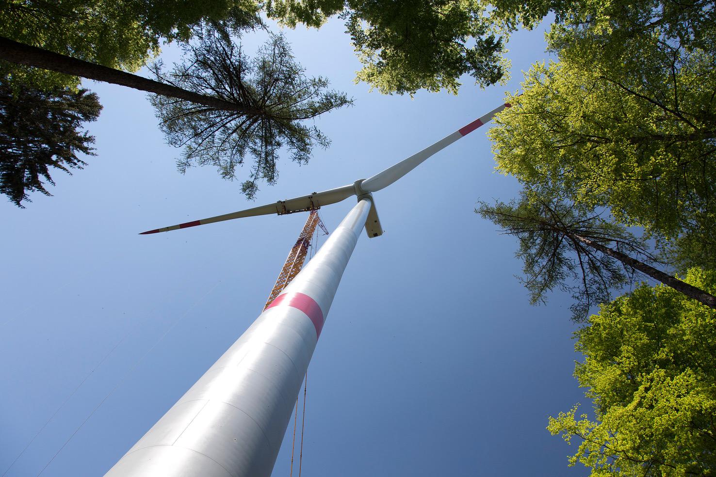 Max Bögl OSTWIND (MBO) eröffnet Bayerns größten Wald-Windpark: Zwei Wälder, zwei Windparks und eine Vision!